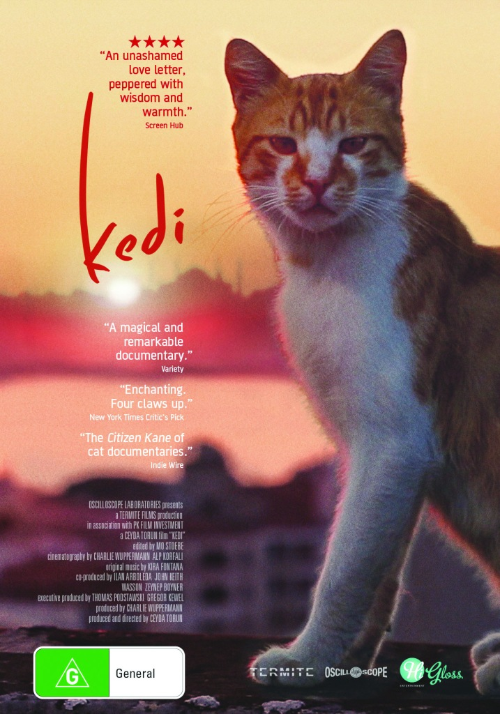 Kedi-webposter (1)